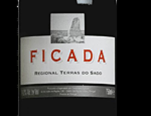Een prominente plek voor Portugese wijnen in de hedendaagse wijncultuur