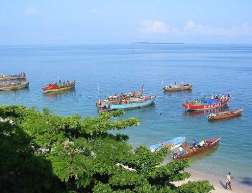 Zon, zee, strand en… Zanzibar Tanzania