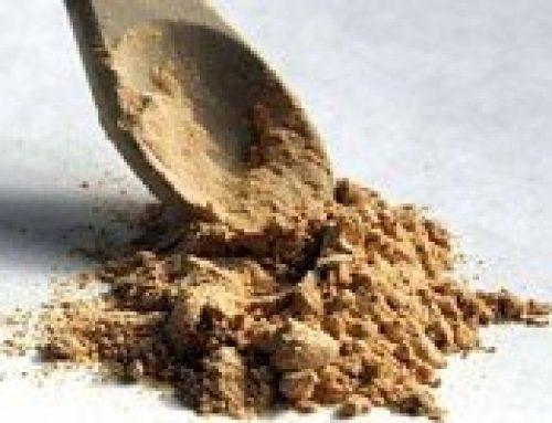 De hoge voedingswaarde van het wortelgewas maca