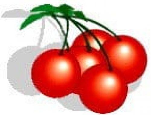 Goji bessen behoren tot de bijzondere vruchten